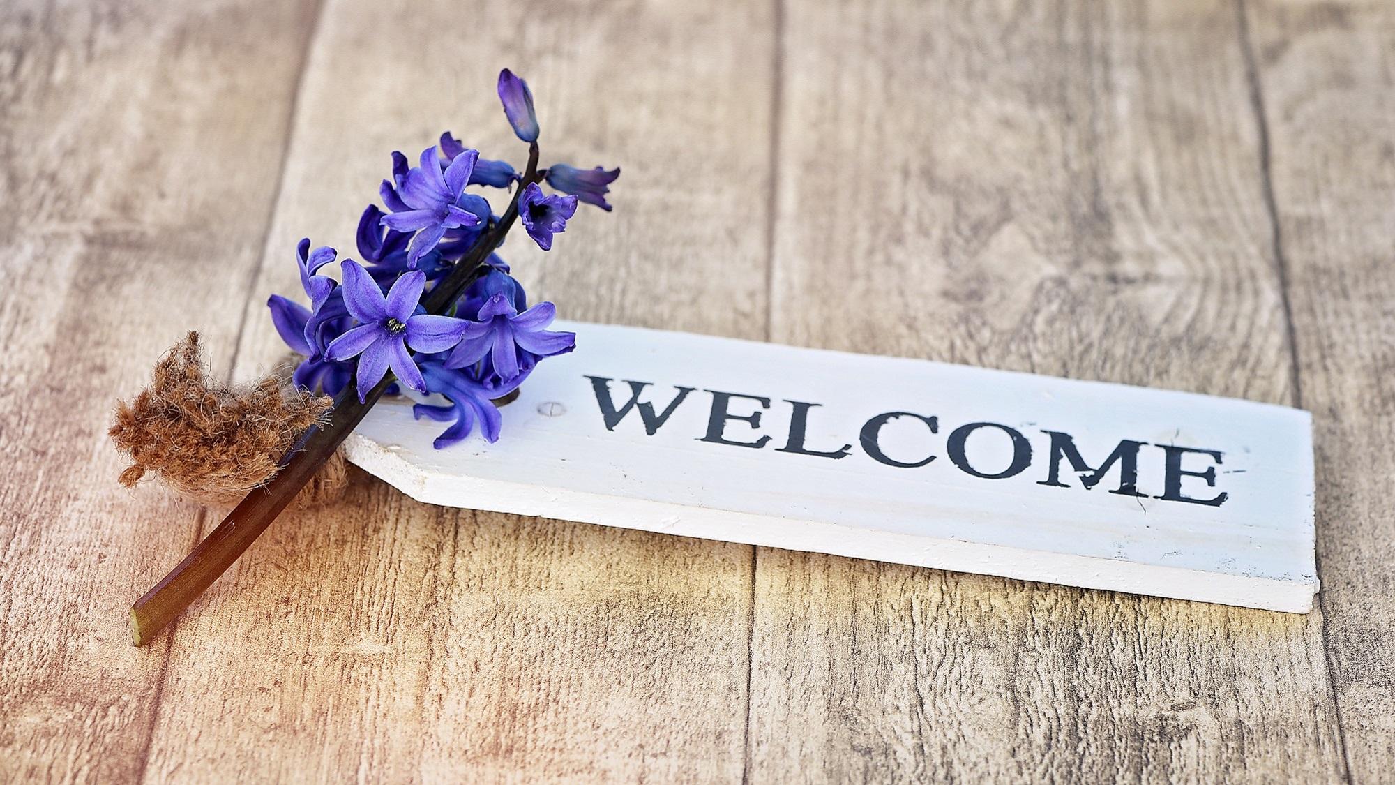 """""""Welcome"""" Schild liegt auf holzboden mit Blauer Blume daneben"""